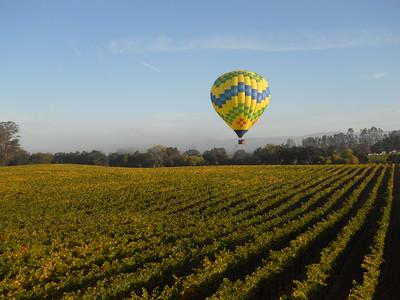 Hot air balloon flying over vineyards on a sunny day